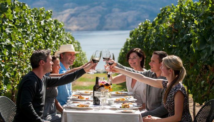 Wine tour guide