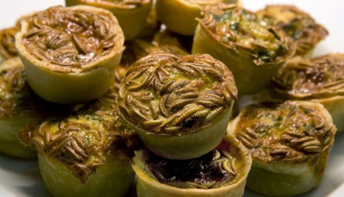 Mealworm Quiche Dish