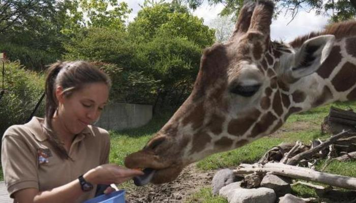 how to become a zoologist in the usa