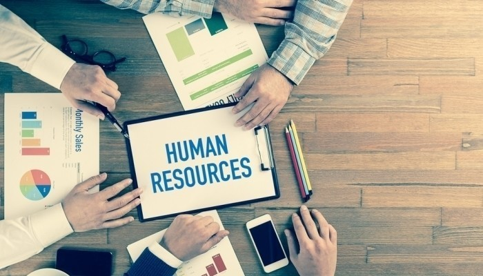 Human Resource Professionals: A Big Help for the Growth of Your Company