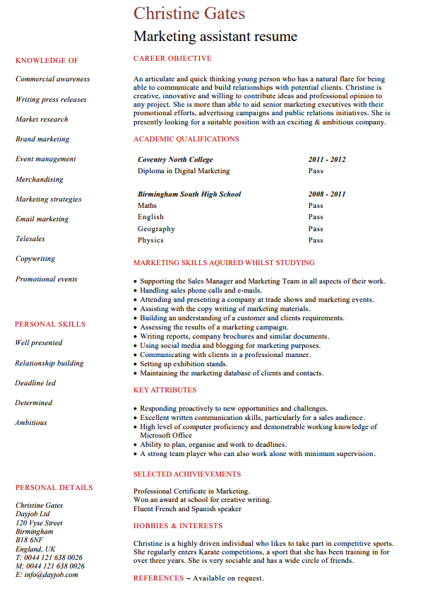 Marketing Manager CV Example for Marketing   LiveCareer Non Profit Executive Resume Template