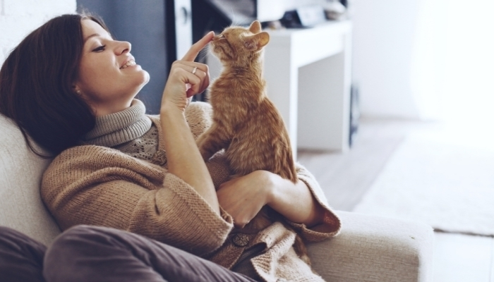 young woman wearing warm sweater is resting with a cat on the armchair