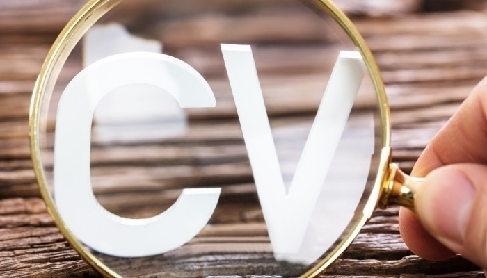 How To Write Your Cv S Employment History Section With