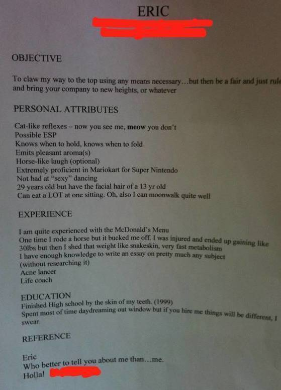 20 of the funniest resumes and cvs you u2019ll ever see