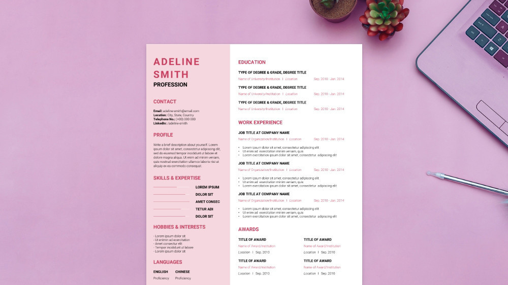 Pink Aesthetic CV Template